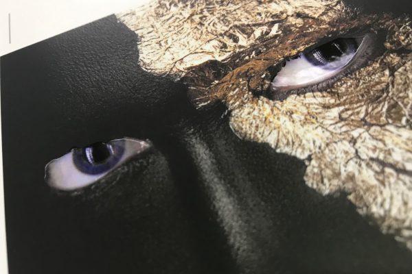 Impressions Mask Single